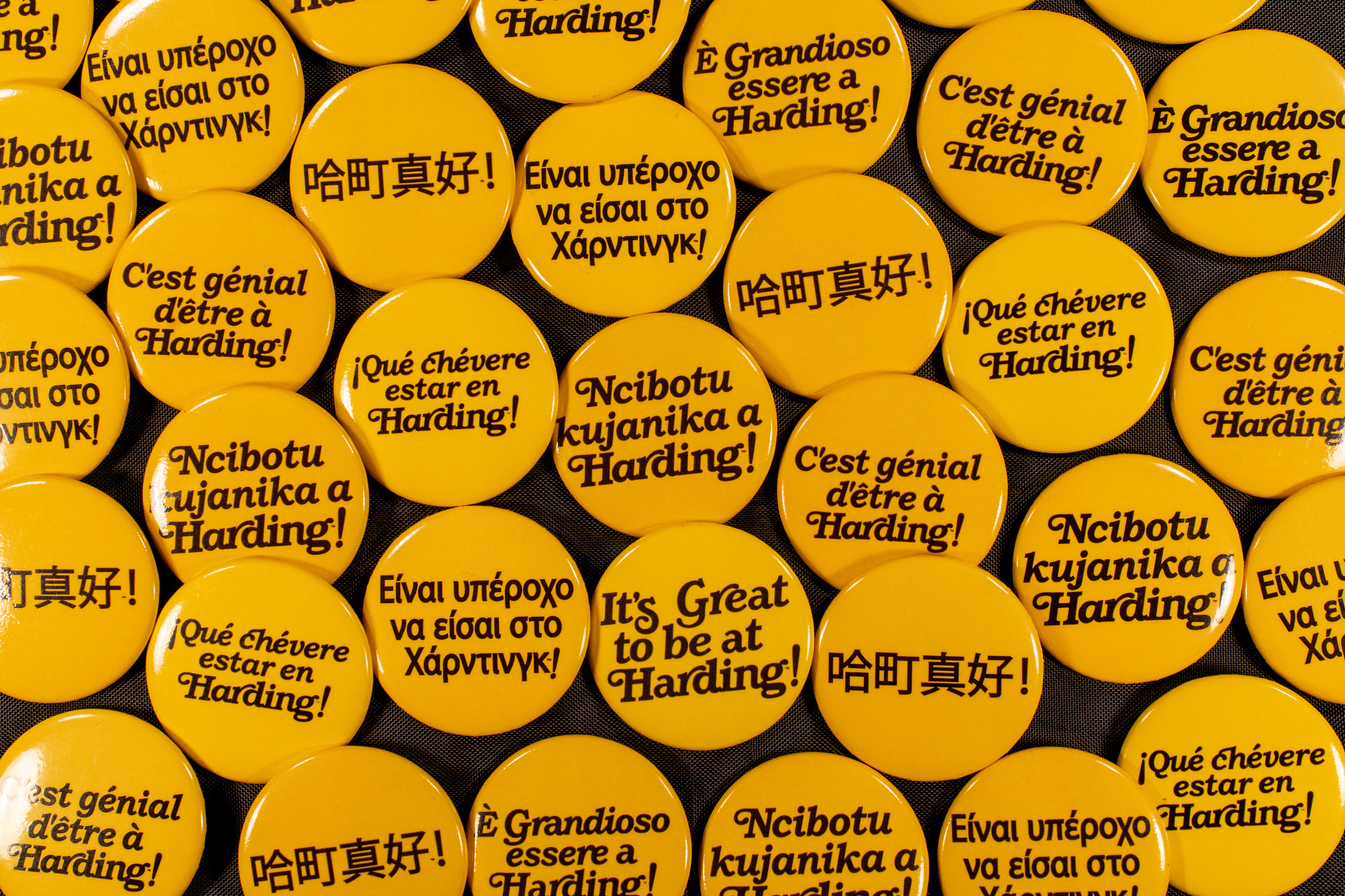 It's Great to Be At Harding Buttons