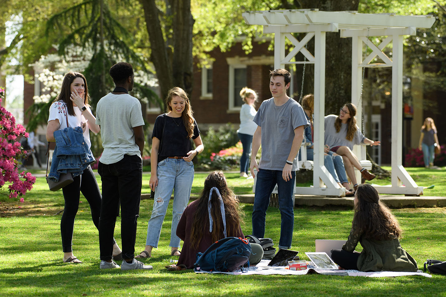 This is a photo of students hanging out on the front lawn.