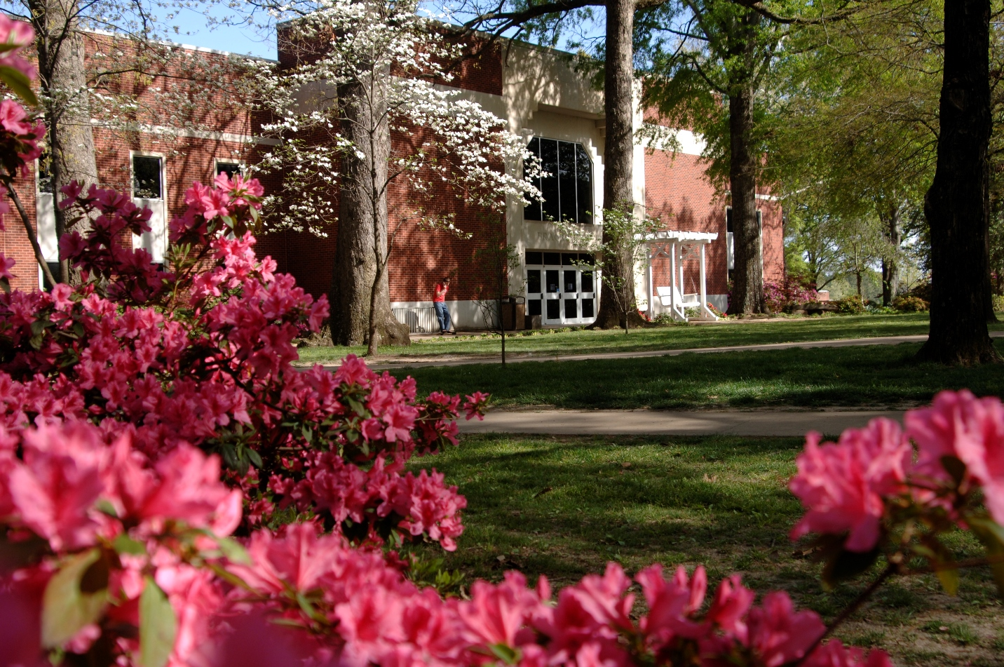 Brackett Library in the Spring
